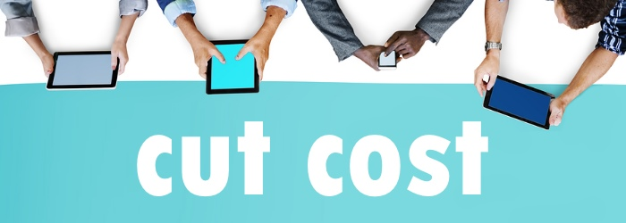 cut outsourced app development cost
