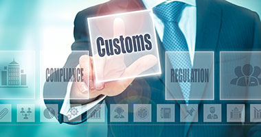 Customs Brokerage Application Services